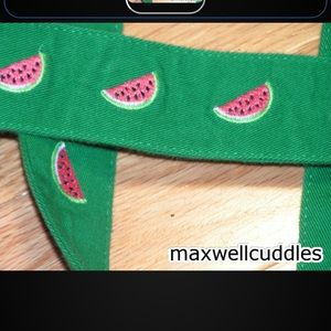 J CREW NWT CRITTER BELT EMBROIDERED WATERMELON S/M